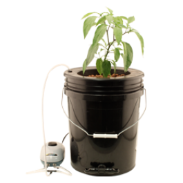 Flo N Gro - Gro Momma Bubbler Bucket