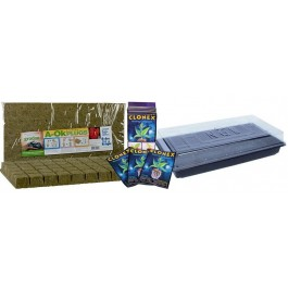 Clone Kit: Clonex + Seedling Tray & Dome + Grodan Rockwool