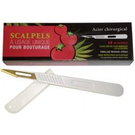 Disposable Sterilized Scalpels - 10 Pack