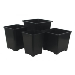 Premium Black Square Pots