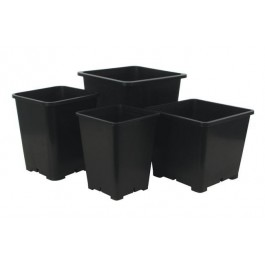 Premium Black Square Pots