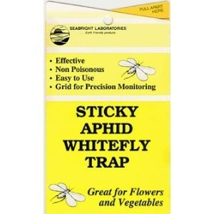 Whitefly Trap - 5 Pack