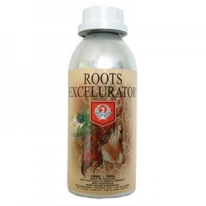 House & Garden Roots Excelurator