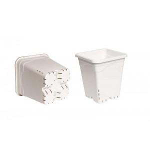 Premium White Square Pots