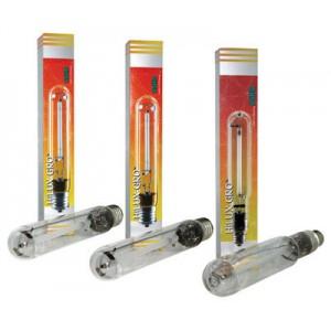 Ushio Enhanced HPS Lamps